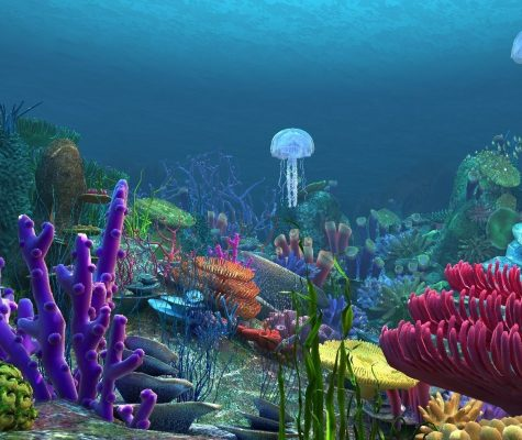 underwater-world-of-coral-and-aquatic-plants-animated-005-3d-model-animated-max